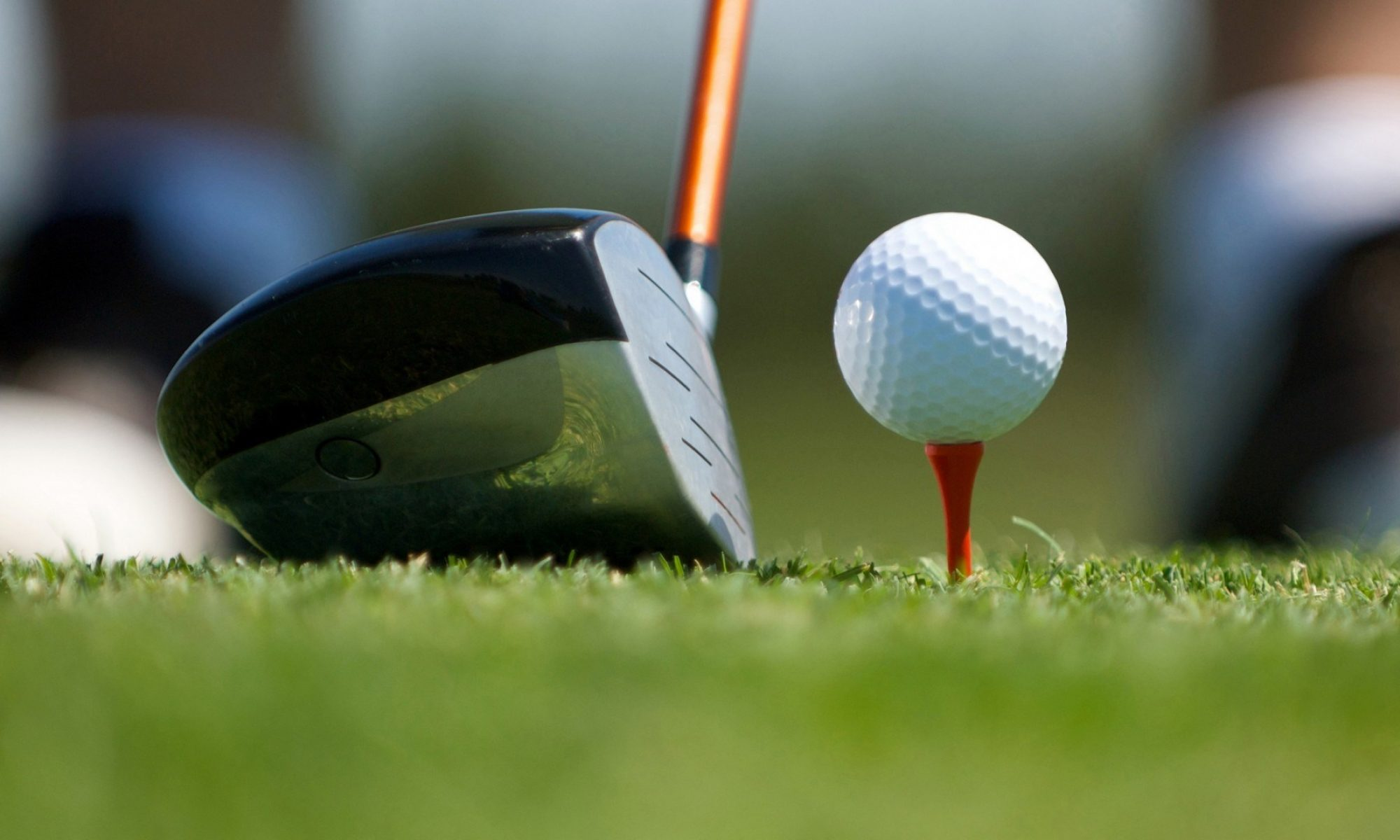 Dalewood Senior Mens Golf League