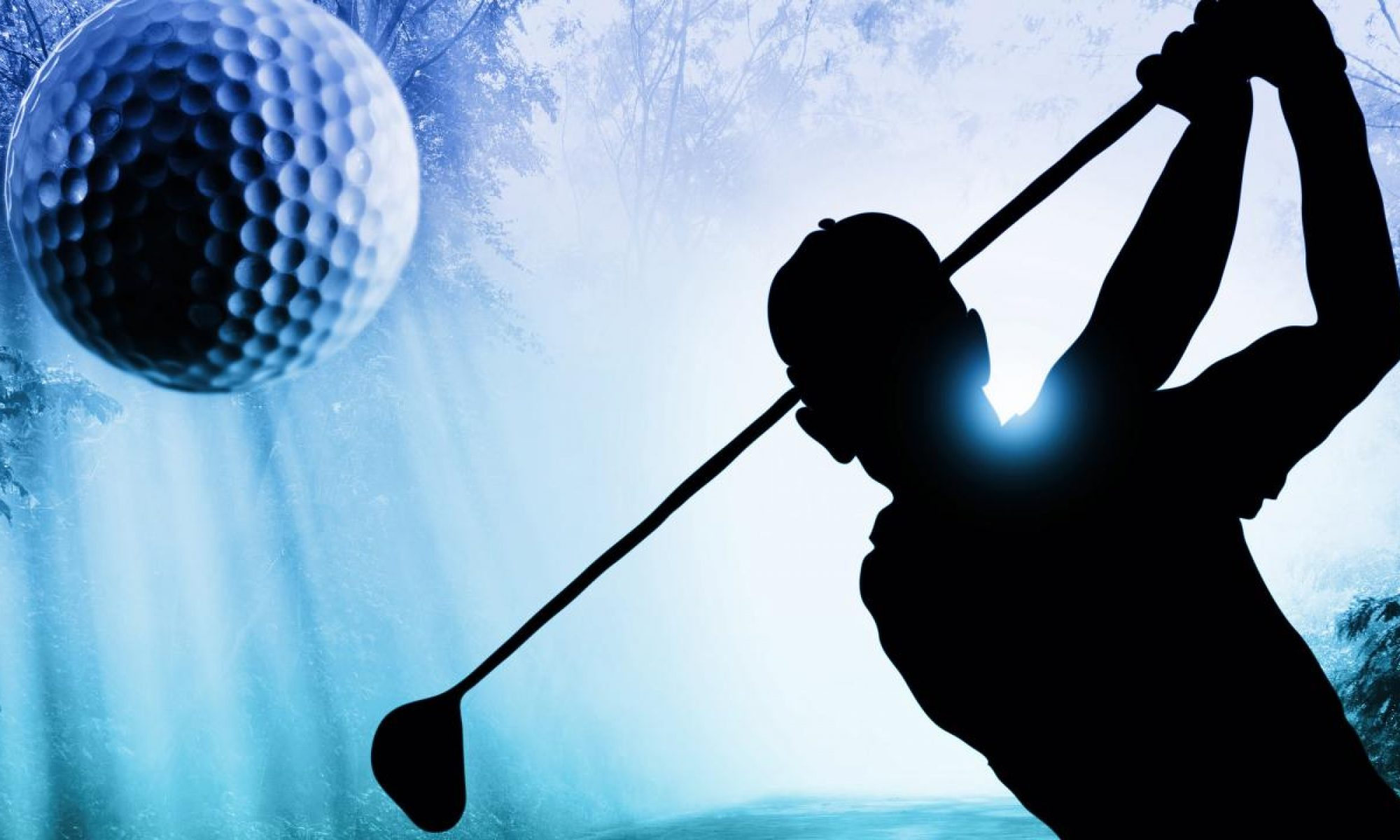 Dalewood Senior Mens Golf League